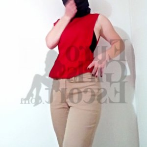 Idil asian live escorts in Lamesa