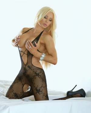 Teha escorts in New Port Richey